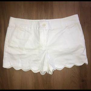 Ann Taylor LOFT Scalloped The Riviera Shorts Sz 6